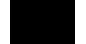 lakeview_black_logo